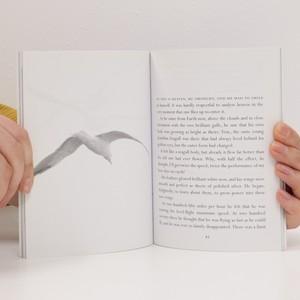 antikvární kniha Jonathan Livingston Seagull, 2003