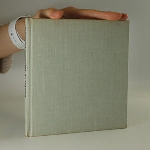 náhled knihy - Svetové insitné umenie (slovensky)