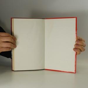 antikvární kniha Madona v kabátě, 1997