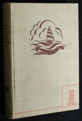 náhled knihy - Malá dáma z Velikého domu