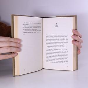 antikvární kniha Kouzelné dobrodružství. Velký Meaulnes, 2018