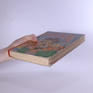 antikvární kniha Mik za to nemůže, 1935