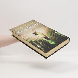 antikvární kniha Zapomenutá : román, 2012
