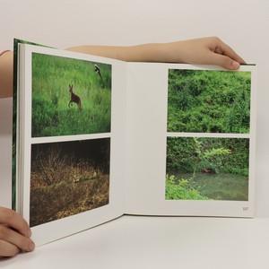 antikvární kniha So simple, so beautiful, so perfect : book on Ahae, 2012