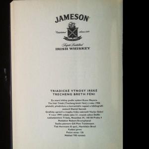 antikvární kniha Triadické výnosy irské = Trecheng breth féni, 1999