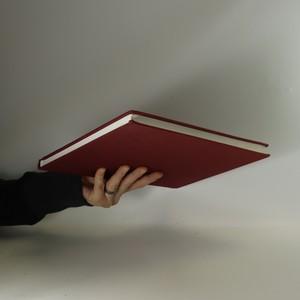 antikvární kniha Historické pády a vzestupy, 1997