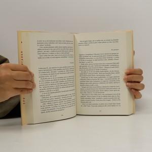 antikvární kniha Deník matky na pokraji šílenství, 2008