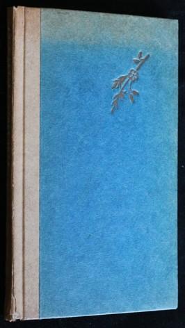 náhled knihy - Svatý Diot