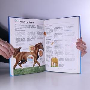 antikvární kniha Kůň a pony. Obrazový průvodce, 1999