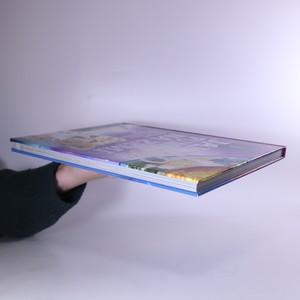 antikvární kniha Jak to funguje na Zemi, 2013