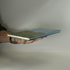 antikvární kniha Kouzelné dobrodružství s papouškem Žakem, 2009