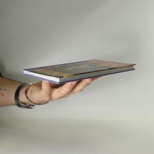 antikvární kniha Vyjížďka hrůzy, 2010