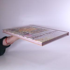 antikvární kniha Slané a sladké koláče a pizzy, 2013
