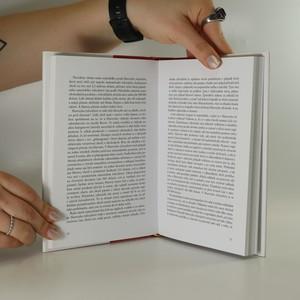 antikvární kniha Báječný chaos : skrytý půvab nepořádku, 2008