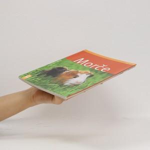 antikvární kniha Morče, 2011