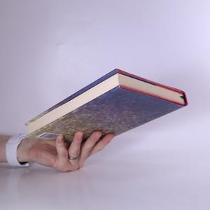 antikvární kniha Veliké tajemství. Případy bratra Cadfaela. 11. díl, 2010