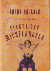 náhled knihy - Elektrický Michelangelo. Román o lásce, ztrátě a umění tetování