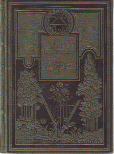 náhled knihy - Léta persekuce. Kniha feuilletonů z r. 1867.