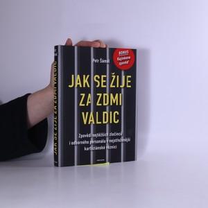 náhled knihy - Jak se žije za zdmi Valdic : Zpovědi nejtěžších zločinců i odborného personálu v nejstřeženější kartuziánské věznici