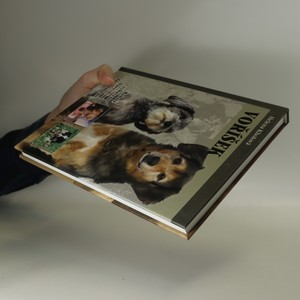 antikvární kniha Voříšek, neuveden