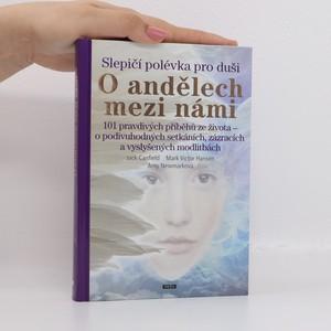 náhled knihy - Slepičí polévka pro duši - o andělech mezi námi