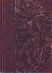 náhled knihy - Na Sibiř
