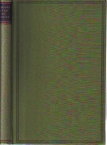 náhled knihy - Útěk do Budína