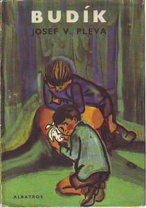 náhled knihy - Budík