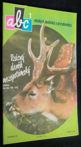 náhled knihy - ABC mladých techniků a přírodovědců. roč.33, č.1