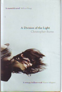 náhled knihy - A Division of the Light