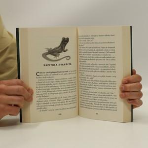 antikvární kniha Magisterium. Kniha první, Železná zkouška, 2015