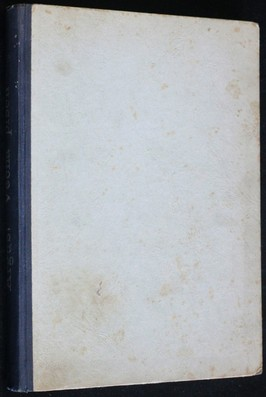 náhled knihy - Věčná píseň : román