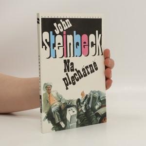 náhled knihy - Na plechárně