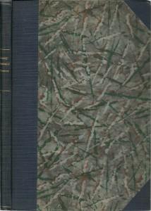 náhled knihy - Slovenská mluvnice