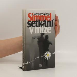 náhled knihy - Setkání v mlze : [povídky]