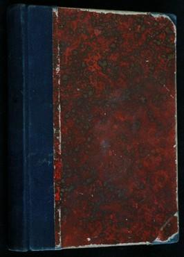 náhled knihy - Město v horách : román