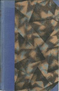 náhled knihy - Ztracený stín