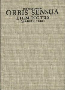 náhled knihy - Orbis sensualium pictus quadrilinguis