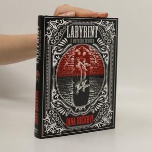 náhled knihy - Labyrint u Mrtvého ženicha