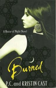 náhled knihy - Burned