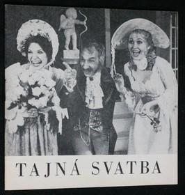 náhled knihy - Tajná svatba