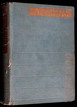 náhled knihy - Bill dobyvatel : román