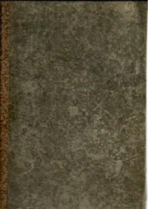 náhled knihy - Consistorial-Currenden : für die Leitmeritzer bischöfliche Diözesen-Geistlichkeit. Siebenter Band 1. Jäner 1854 bis letzten Dezember 1857
