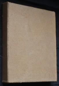 náhled knihy - Michelangelo : Sochař, malíř, stavitel, básník