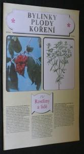 náhled knihy - Bylinky, plody, koření