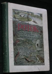 náhled knihy - Potok