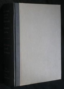 náhled knihy - Tschechisch-deutsches Wörterbuch der Umgangssprache. Česko-německý slovník živé mluvy