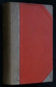 náhled knihy - Haldy : román