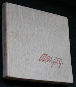 náhled knihy - Malířovy toulky po Evropě, Cejlonu a Indii