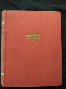 náhled knihy - Chci věřit/Jantarový náhrdelník